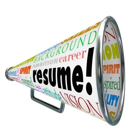 Information Technology IT Resume Examples